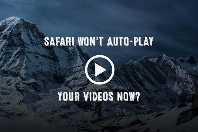 Safari Browser Fix